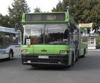 23 автобус Мозыря