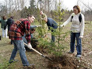 Неделя леса пройдет в Беларуси с 5 по 12 апреля