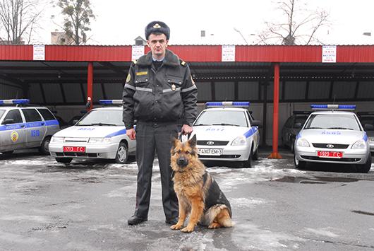 Милиционер-кинолог группы задержания, старший сержант А.Н.Царенко и его воспитанница, немецкая овчарка Альба. Кстати, среди собак на службе в отделе Департамента охраны только «прекрасный пол».