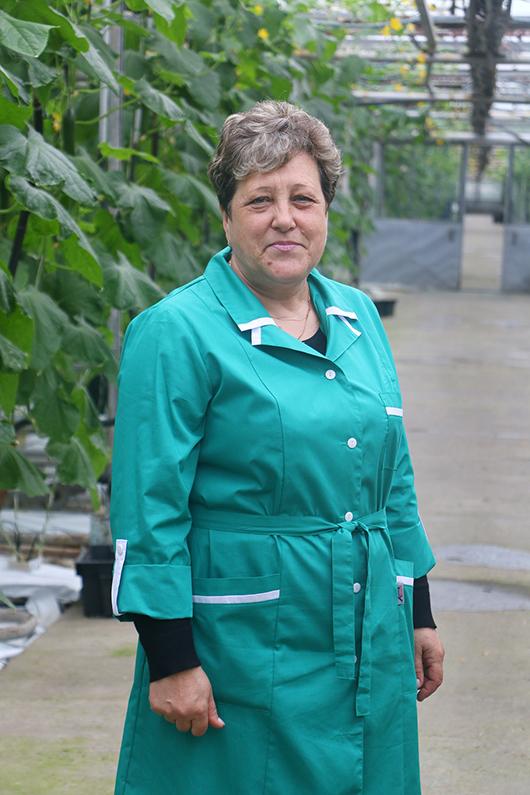 Анна Владимировна Бондаренко работает на тепличном комбинате с его открытия.