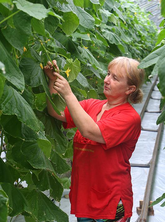Галина Алексеевна Лавшук  с удовольствием делится с молодыми специалистами многолетним опытом.