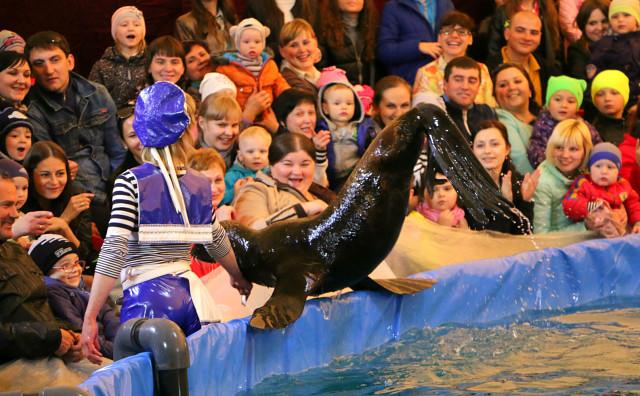 дельфинарий в Мозыре2