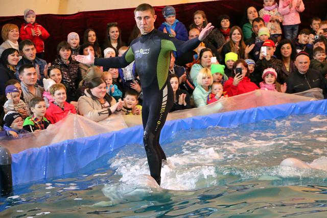 дельфинарий в Мозыре8