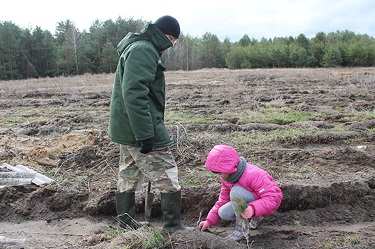 Настя Марачковская посадила деревья под руководством главного лесничего Сергея Тарасова.