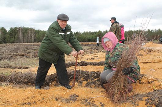 Лесничий Леонид Курочка ценит коллективный труд.