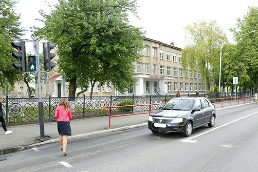 Улица Рыжкова (Мозырьский лицей)