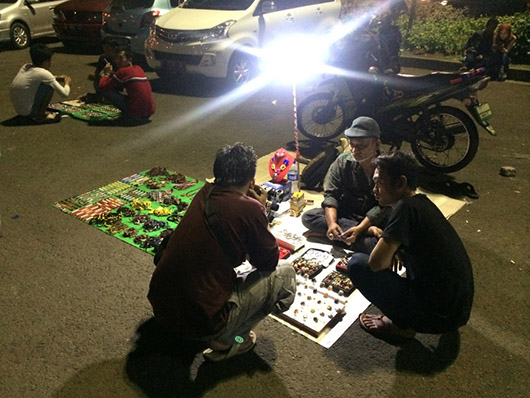 Джакарта столица Индонезии