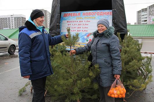Хит продаж – ёлки: экономист лесхоза Алла Мельченко испытала себя в роли продавца.
