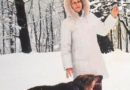 В зимнюю стужу позаботьтесь о бездомных животных!