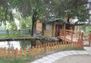 Конкурс на лучшую агроэкоусадьбу объявлен в Беларуси