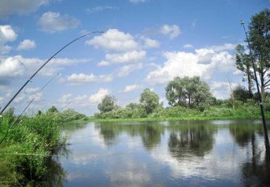 Рыболовные угодья Мозырщины – в аренду