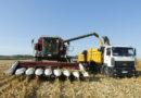 Аграрии Гомельской области в 10 раз увеличили темпы уборки кукурузы на зерно к уровню 2017 года