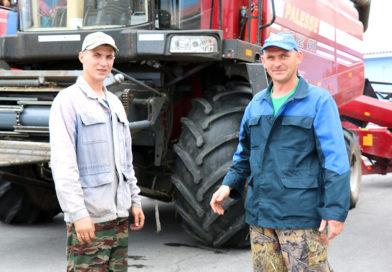 Зерно в колосу – торопись сжать полосу