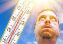 Ученые из Гарварда утверждают: во время жары организм «работает на износ»