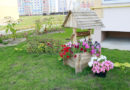 В Мозыре выбрали лучший двор среди домов ЖСПК и товариществ собственников