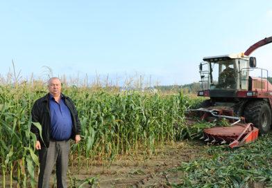 Секреты растениевода: доход в поле растет