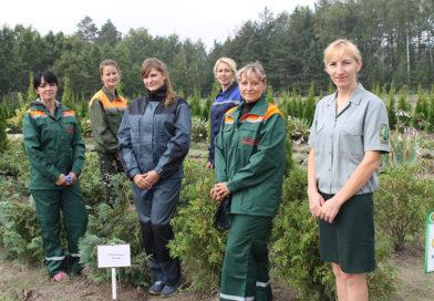 Работники Мозырского опытного лесхоза сегодня отмечают профессиональный праздник