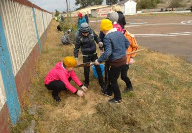 Учащиеся мозырской СШ № 6 активно участвуют в благоустройстве территории школы и микрорайона Заречный
