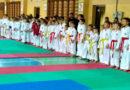 Родные стены вдохновляют. В МГПУ им. И. П. Шамякина прошли республиканские юношеские соревнования по каратэ