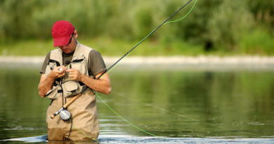 Аренда водоемов – успешный бизнес или ущерб природе?
