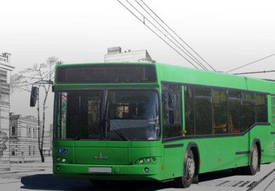Внимание! С 8 по 12 мая будут организовано дополнительные рейсы пригородного и междугороднего транспорта