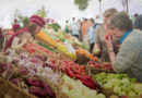 Обзор осенних сельхоз-ярмарок в Мозыре