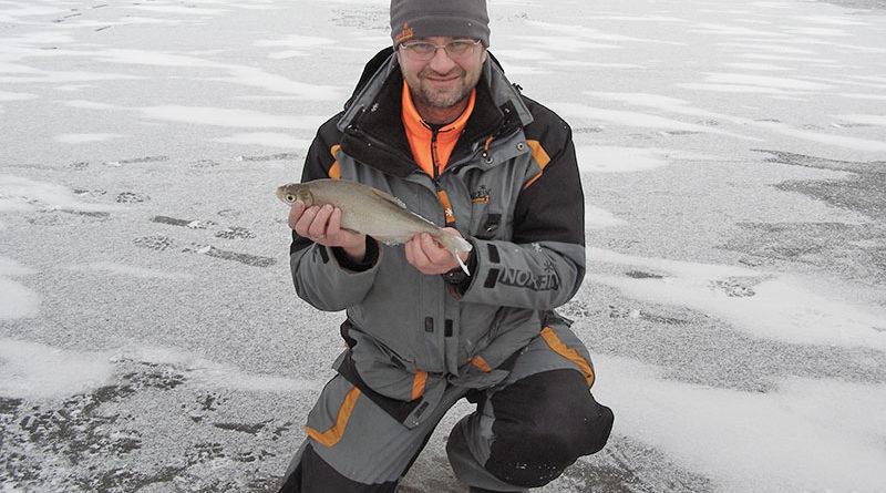 Об особенностях рыбалки на синца | Рецепты