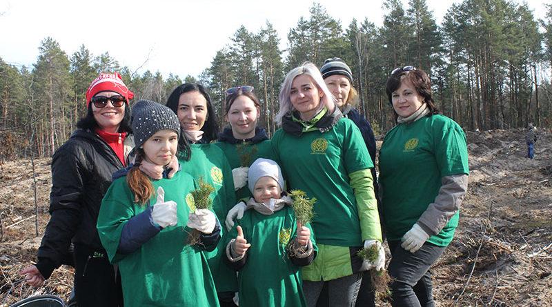Более 23 млн деревьев высажено в Беларуси во время «Недели леса»