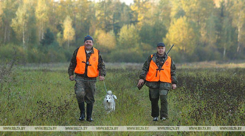 Сезон охоты на рябчика и серую куропатку в Беларуси начнется 5 сентября