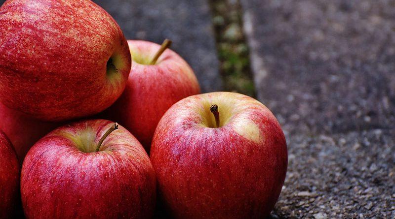 Беларусь обеспечена собственными яблоками почти на 50%