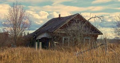 Как работает Указ № 357 о пустующих и ветхих домах в Мозырском районе