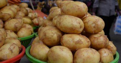 Картошка – подорожала, огурцы – подешевели: что было с ценами в марте