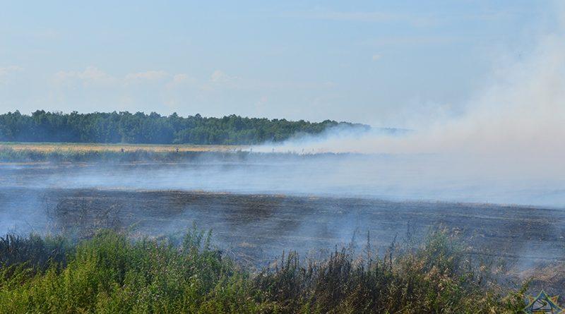 Выжженная земля: на юге Беларуси шестые сутки тушат пожар на торфянике